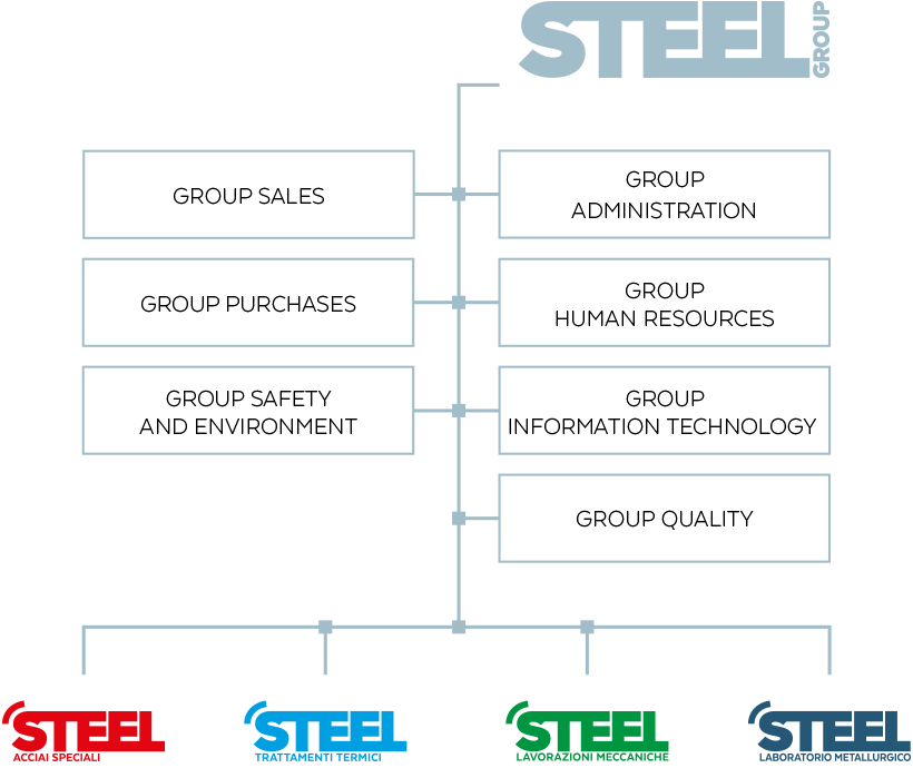 Steel Group - Company organisation